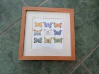 Anne Geddes Baby/Butterfly picture