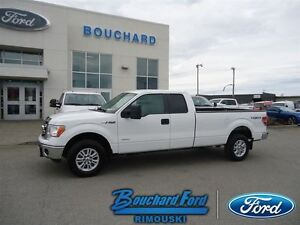 2013 Ford F-150 PAYLOAD XLT