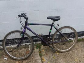 mountain Bike Raleigh ** i can deliver **