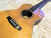 Gorgeous solid top parlour acoustic guitar