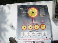 Plinker .22 rifle target