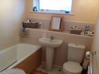 Room for rent singlebed