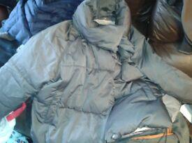 next womens coat