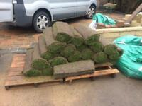 Turf. Delivered this morning freshly cut. Grade a.