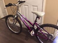 "Girls Raleigh Krush 24"" wheel 18 speed Mountain bike"