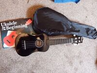 Ukulele with case and book