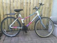 LADIES MOUNTAIN BIKE FOR SALE, GOOD PRICE.