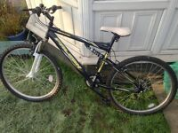 Falcon sentinel mountain bike