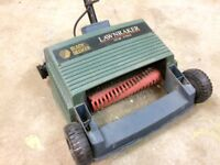 Electric Lawn Raker removes dead grass thatch