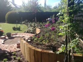 Landscape Design, Build & Planting and Gardening in Edinburgh & The Lothians