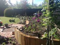 Garden Design, Build and Planting in Edinburgh & The Lothians