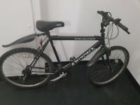 Push bike for sale. Cycle cycling