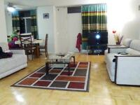 1 bedroom large apartment for rent at 30 Denton Ave from Jan 201