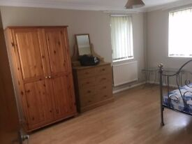 Double room for single occupation next to the science park