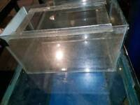 18inch fish tank