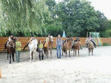 Freestyle ponykampen