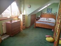 Last Chance- Festival let- Sunny Attic Double Bedroom