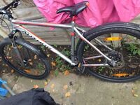 Personalized Author mountain bike not carrera or specialized