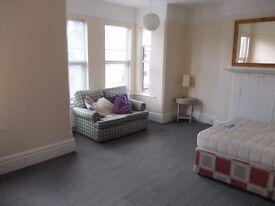 Large Double room in friendly house share, all young professionals, with weekly cleaner.