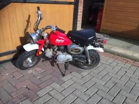 Monkey motorbike