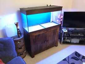 180 litre Marine aquarium with sump (240litre total)