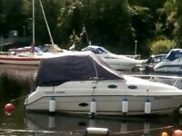 Vip cruising boat for sale