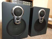 Linn 318A studio monitors/speakers