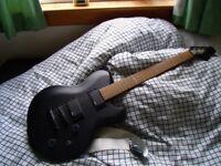 Indie Electric Guitar