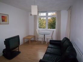 Castleton House, Pier Street, E14 - A well presented one double bedroom furnished flat set - KJ