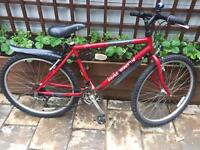 """Men's 19"""" Raleigh bike bicycle inc free lights & delivery"""