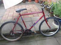 Townsend Volcanic 10 speed gents bike