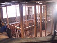 internal dog kennels and runs