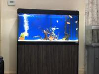 Jewel fish tank with accessories
