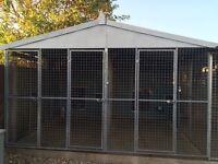 DOG KENNELS FOR SALE for Large/Giant Breeds