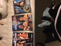 WWE books collectables