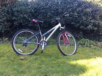 RALEIGH 'free ride all terrain' kids teenage bicycle