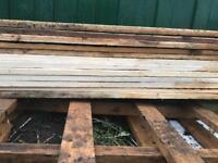 4.8m 4x1 timber