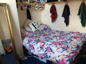 Female Professional sought for dble room in large beautiful house on Banstead Park. £245pcm