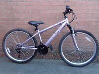 Ladies mountain bike (small frame)