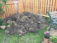 FREE SOIL FREE LOCAL DELIVERY BARGAIN!