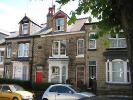 All bills included. Large room available in a nice shared house in Nether Edge