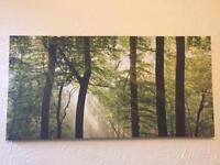Beautiful picture canvas