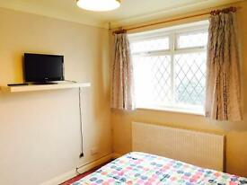 Double / spare room available