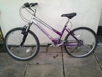 Girls Bike / Short Woman.