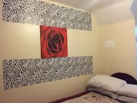 Double size room available for a professional/ student