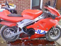 mini moto motobike 50cc microbike kids bike PRICE DROP