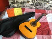 Stagg Guitar with carry case, music stand& 2 books