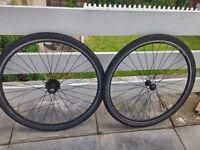 Free: Maddox drx6000 wheels