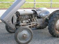 FERGUSON TEF20 Diesel + Orig Fergi Roll Bar, Various Injector Pumps, Rear Rims BREAKING FOR PARTS