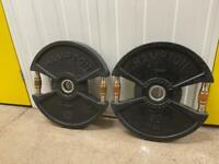 2 x 20kg plates